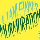 liam finn murmuration