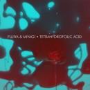 """Pitchfork Premieres New Fujiya & Miyagi Track """"Tetrahydrofolic Acid"""""""