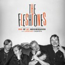 TheFleshtones_EndOfMyNeighborhood_COVER
